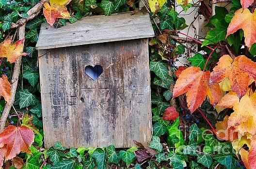 Bird House by Kate Stoupas