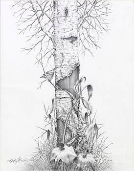 Bird In Birch Tree by Barb Schacher