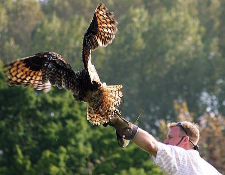 Bird in Hand by Ansate Jones