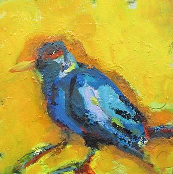Bird by Lauren Acton
