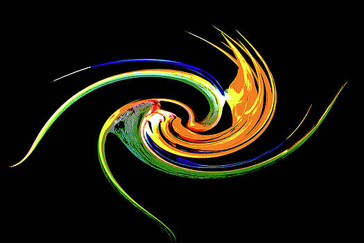 Rick Strobaugh - Bird of Paradise Abstract 4