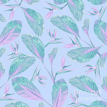 Bird of Paradise by Elizabeth Tuck