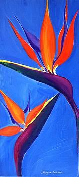 Bird of Paradise Flower  by Maya Green