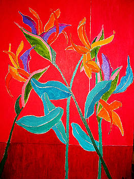 Bird Of Paradise by Martin Silverstein