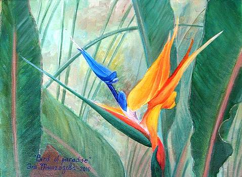 Bird of paradize by Eleonora Mingazova