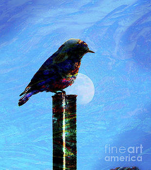 Bird on a Post by Robert Ball