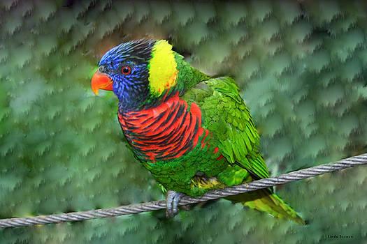 Linda Sannuti - Bird on a wire