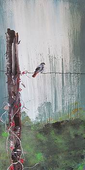 Bird on a Wire by Susan Snow Voidets