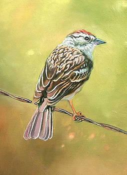 Bird on a Wire by William Hay