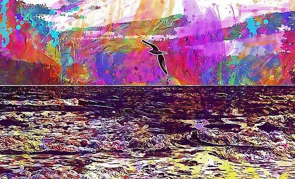 Bird Seagull Sea Water Summer Sky  by PixBreak Art