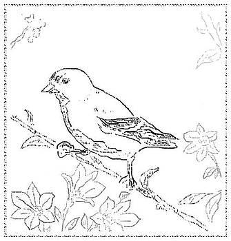 Bird Sketch 1 by Shishir Thadani
