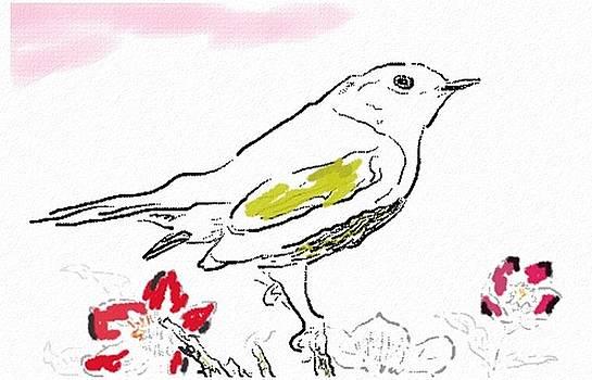 Bird Sketch 13 by Shishir Thadani