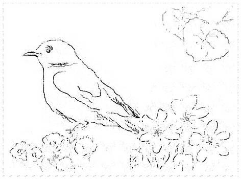 Bird Sketch 6 by Shishir Thadani