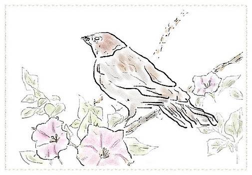 Bird Sketch 7 by Shishir Thadani