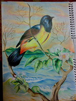 Bird by Tamer Elsamahy