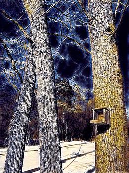 Brenda Plyer - Birdhouse Blue in Winter