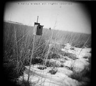 Birdhouse by Holly Brobst