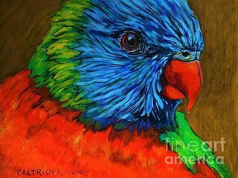 Birdie Birdie by Alison Caltrider