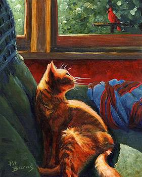 Birdie in the Window by Pat Burns