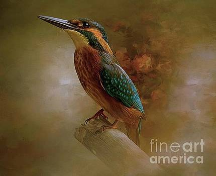 Birdie by Tara Richardson