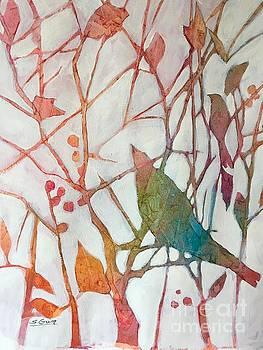 Birds and Berries  by Shane Guinn
