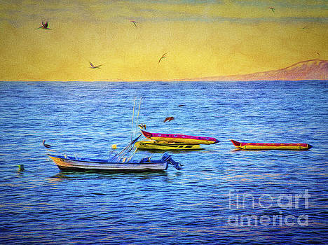BIRDS and BOATS  ... by Chuck Caramella