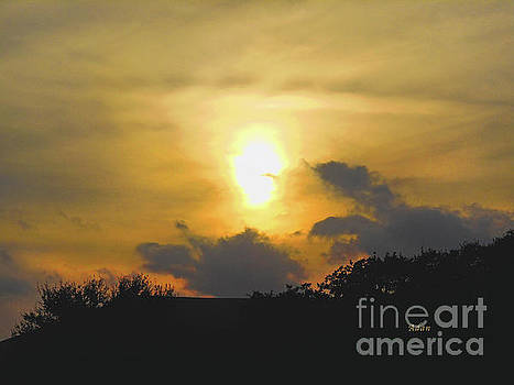 Felipe Adan Lerma - Birds and Fun at Butler Park Austin - Silhouettes - Landscape in the Sky