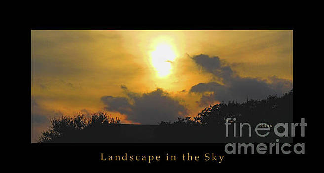 Felipe Adan Lerma - Birds and Fun at Butler Park Austin - Silhouettes - Landscape in the Sky Panorama Poster