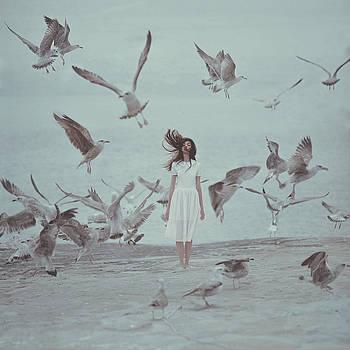 Birds by Anka Zhuravleva
