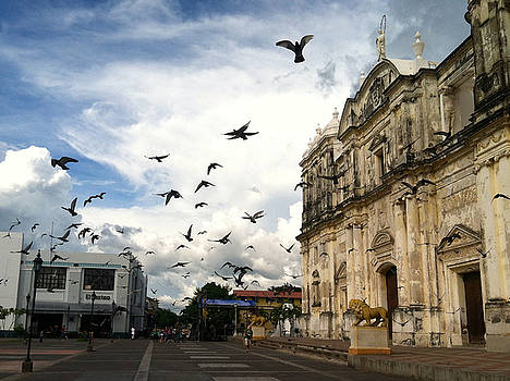 Birds at Leon Cathedral by Francisco