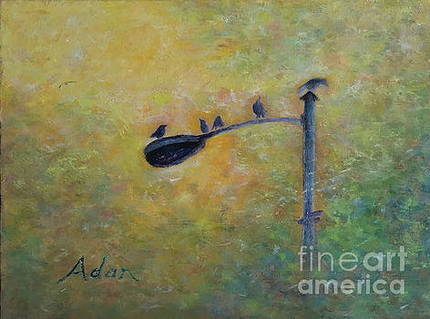 Felipe Adan Lerma - Birds at Pfluger Bridge Austin