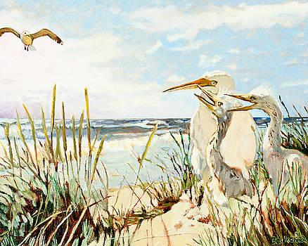 Birds At The Beach by Debbie Beukema