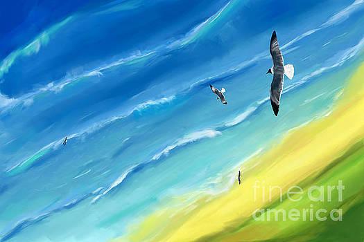 Bird's-eye above sea by Jan Brons