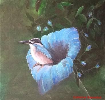 Birds' Eye View by Catherine Swerediuk