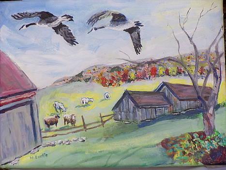 Bird's Eye View by Margaret Buchte
