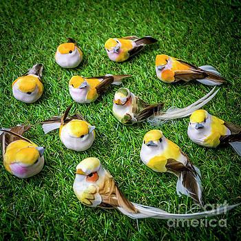 Birds figurine by Bernard Jaubert