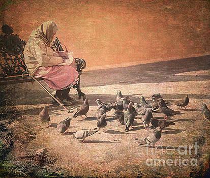 Birds Matter Too by Barry Weiss