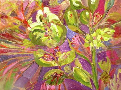 Birds of Paradise by Patsy Walton