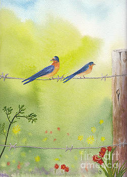 Birds on a Wire Barn Swallows by Conni Schaftenaar