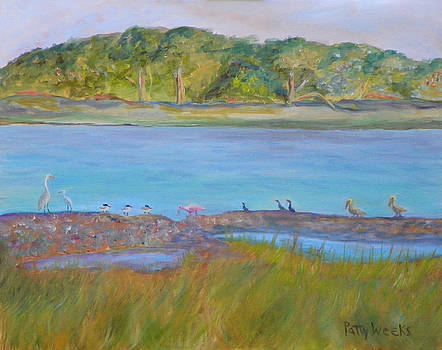 Birds on the Matanzas River by Patty Weeks