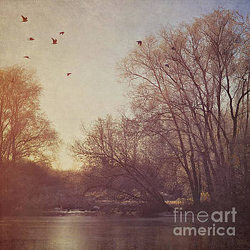 Birds take flight over lake on a winters morning by Lyn Randle