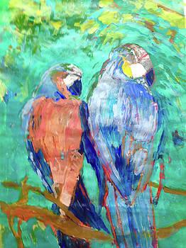 Birds United by Trish Vevera