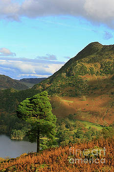 Birk Fell and Silver Crag from Keldas in the Lake District Cumbria by Louise Heusinkveld