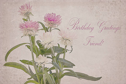 Sandra Foster - Birthday Greetings Friend - Straw Flowers