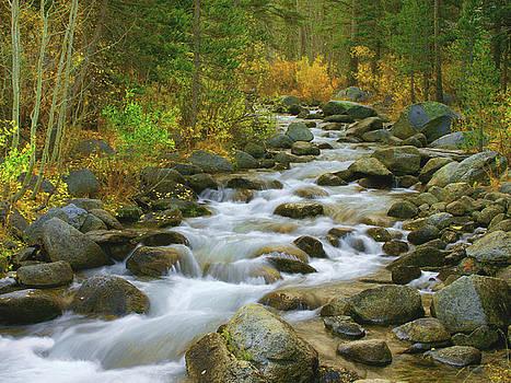 Bishop Creek, Autumn by Tom Kidd