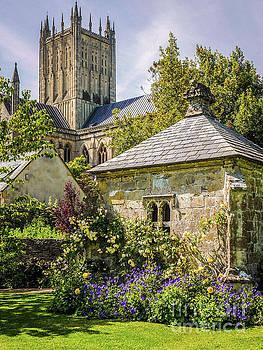 Lexa Harpell - Bishops Palace Gardens - Wells England