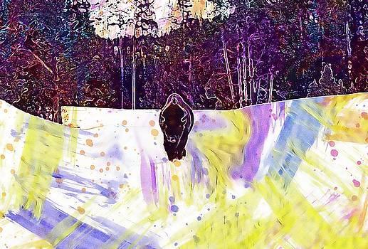 Bison Buffalo American Animal Head  by PixBreak Art