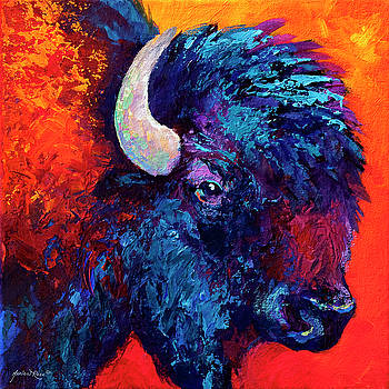 Bison Head Color Study II by Marion Rose
