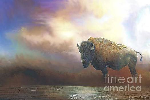 Bison in Yellowstone by Janette Boyd