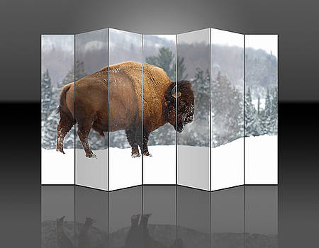 Bison Reflection by Marvin Blaine